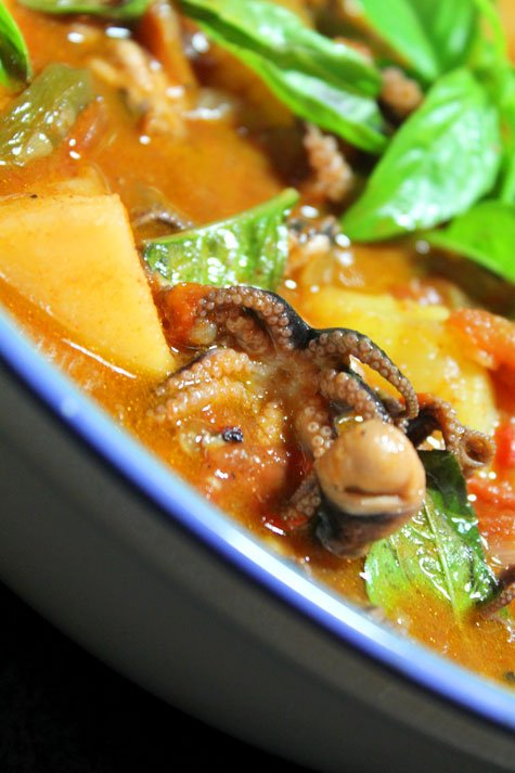 Spanish-Inspired Stewed Baby Octopus‏