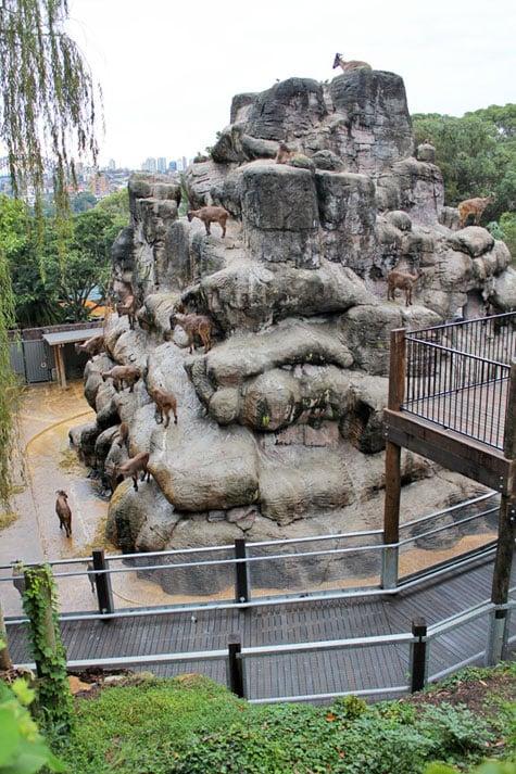 Taronga Zoo, Sydney, Australia