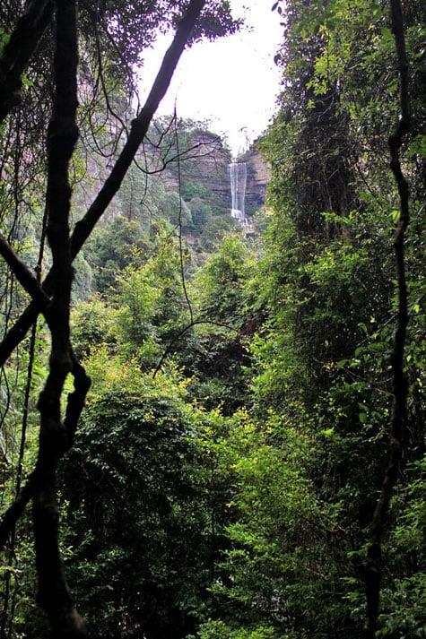 Blue Mountains, New South Wales, Australia