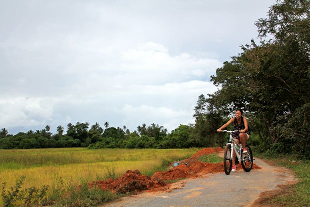 Dev's Adventure Tours:  Nature Cycling, Jungle Trekking, & Mangrove Kayaking in Langkawi, Malaysia
