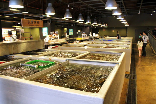 My name is jb and i m addicted to addiction aquatic for Live fish store