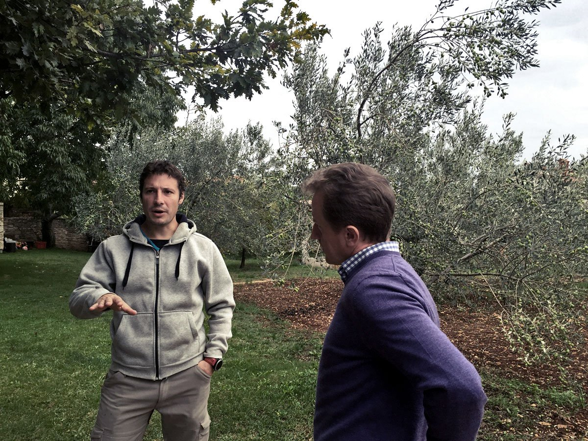 Two men in an olive orchard