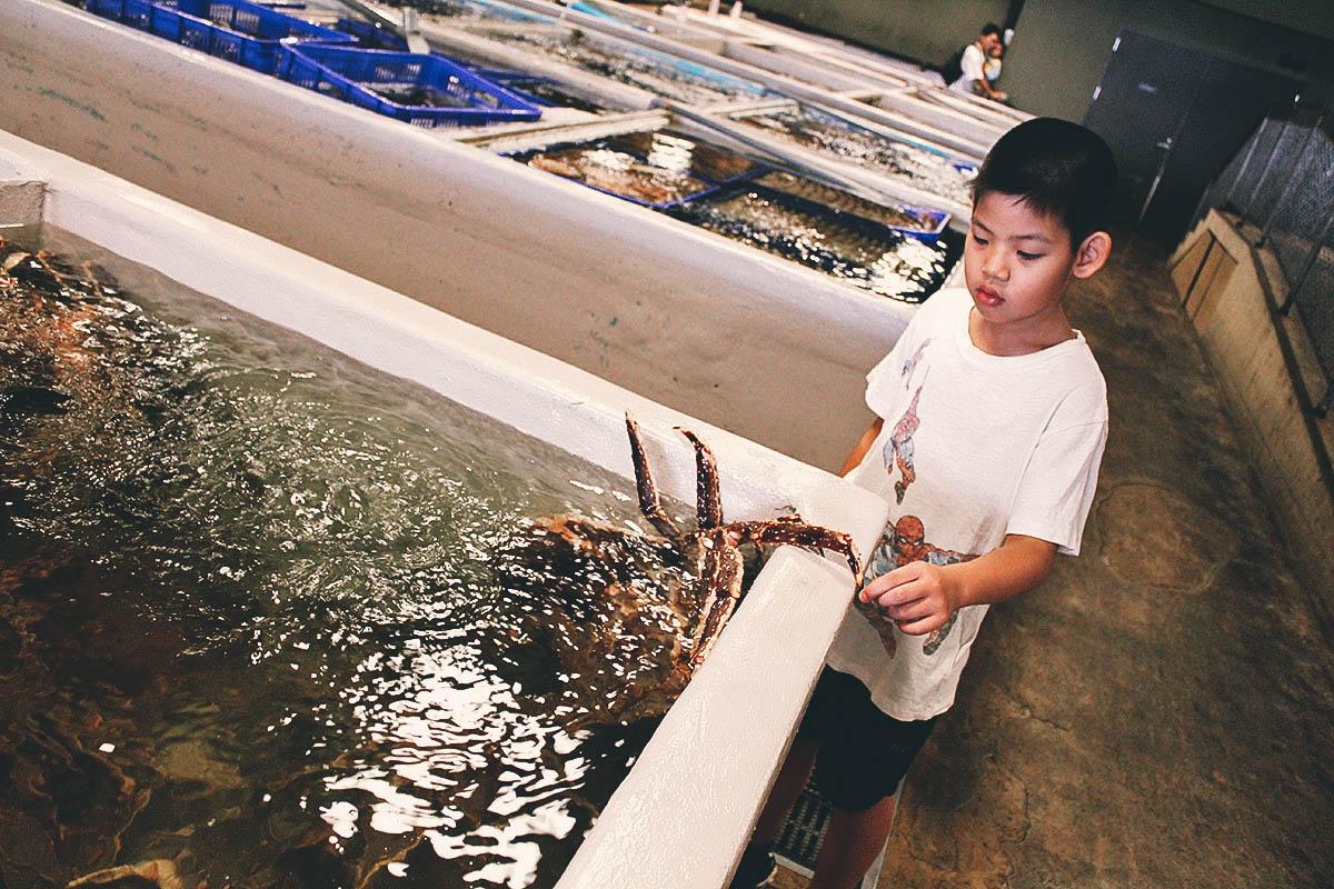 Addiction Aquatic Development, Taipei