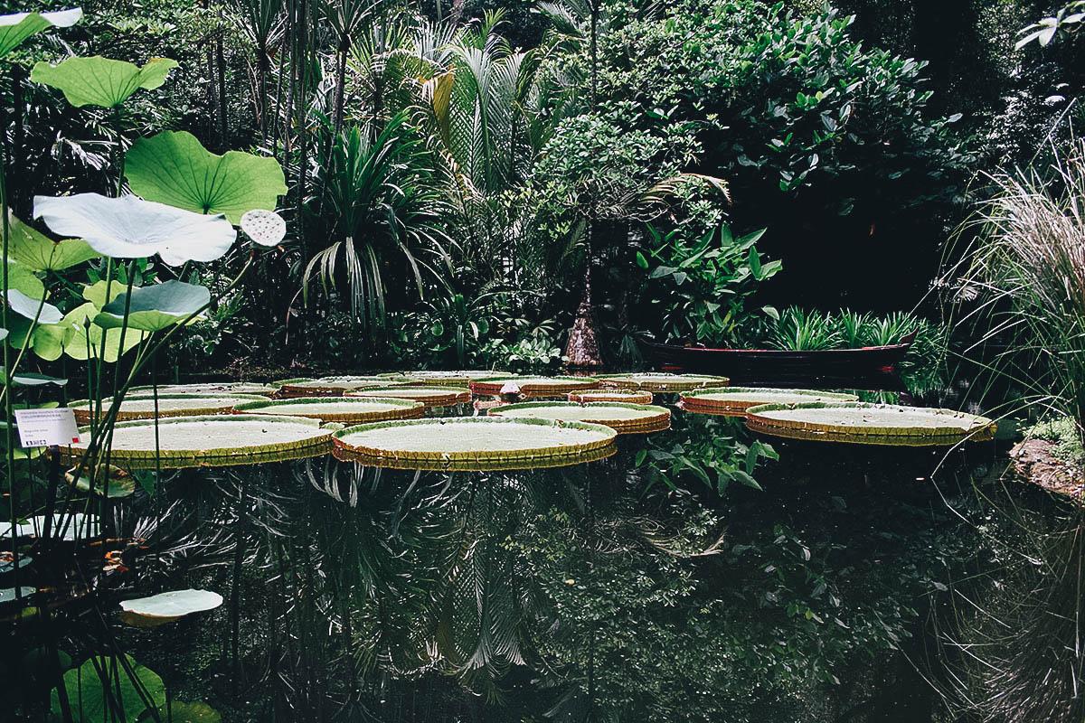 Tropical Spice Garden, Penang, Malaysia