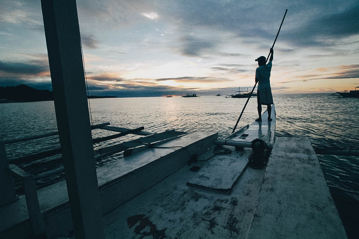 On Chasing Dolphins, Turtles, and a Pop-up Seafood Bar in Bohol, the Philippines