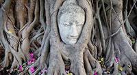 Ayutthaya City Day Tour from Bangkok