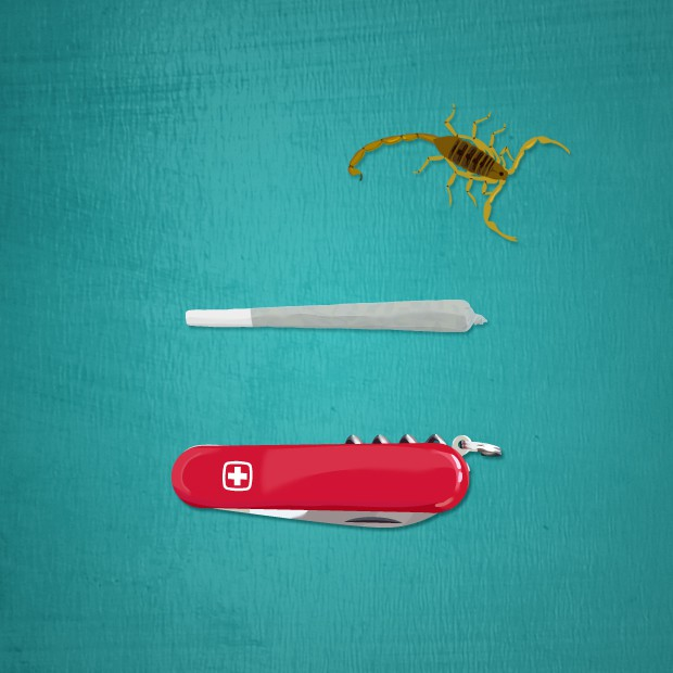 A Scorpion, a Spliff, and a Swiss Army Knife at Chitwan National Park, Nepal