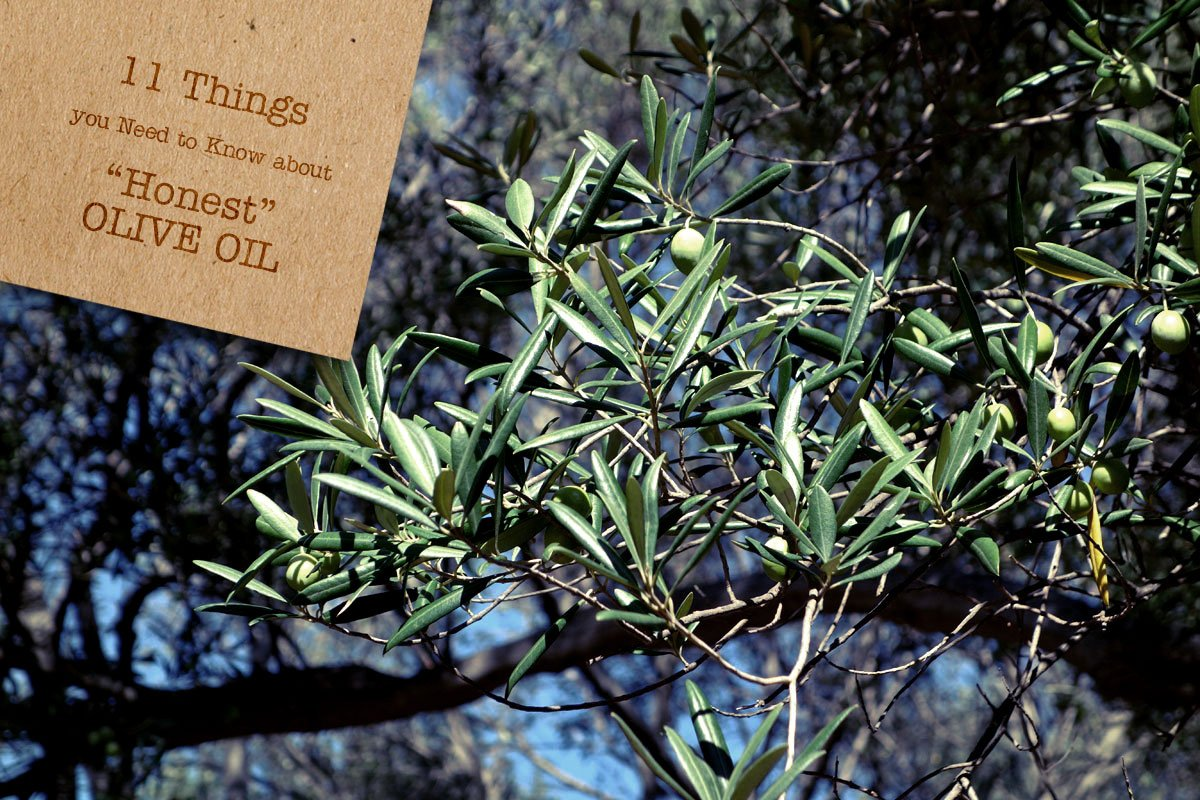 """11 Things You Need to Know about """"Honest"""" Olive Oil"""
