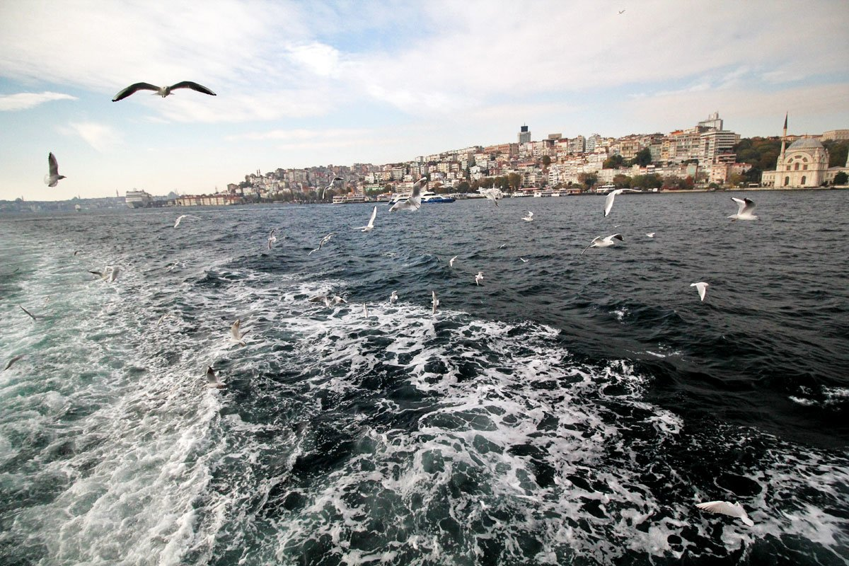 Take a Cruise on the Bosphorus