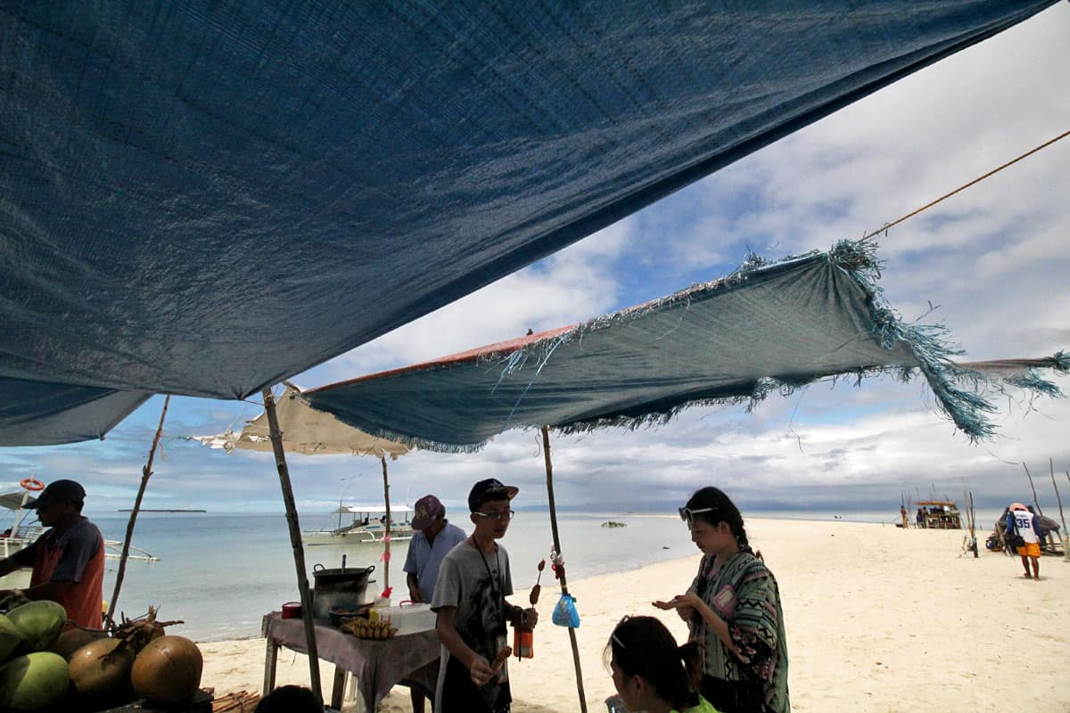On Chasing Dolphins and Turtles and a Virgin Island Seafood Bar in Bohol, the Philippines