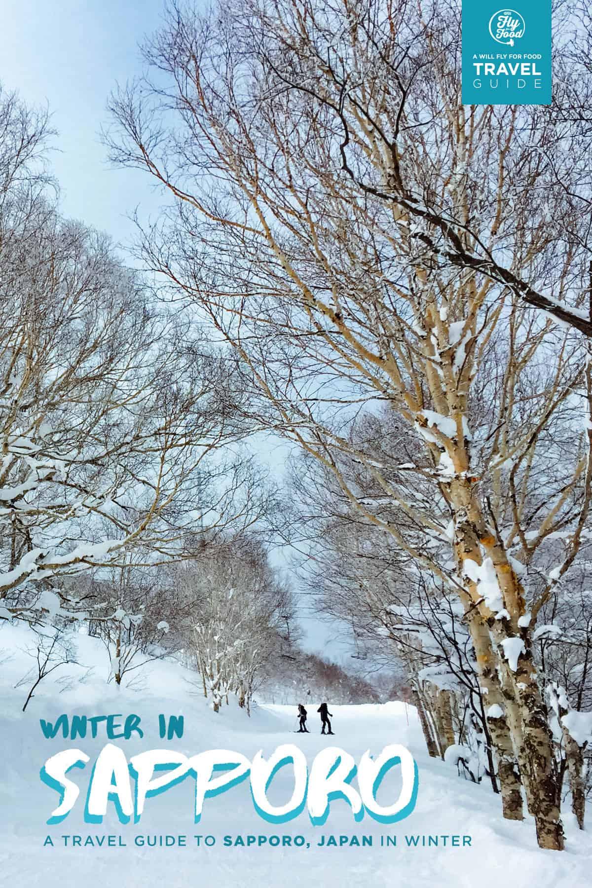 Skiing in Sapporo