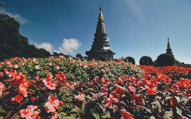 Spend the Day on Doi Inthanon, Thailand's Highest Mountain