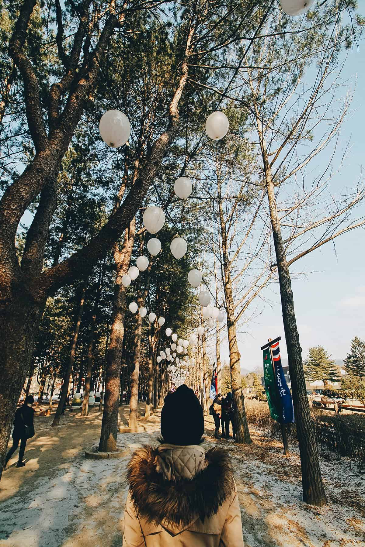 Nami Island, Chuncheon, South Korea