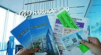Universal Studios Japan™ VIP Wristband and Harukas 300 Observatory Pass