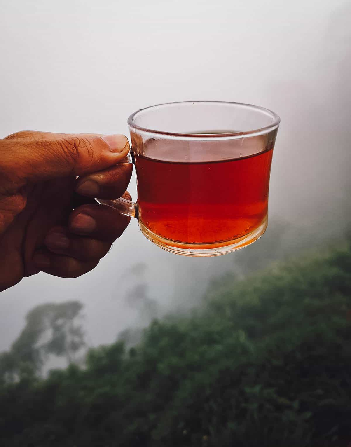 Drinking Tea, Ella, Sri Lanka