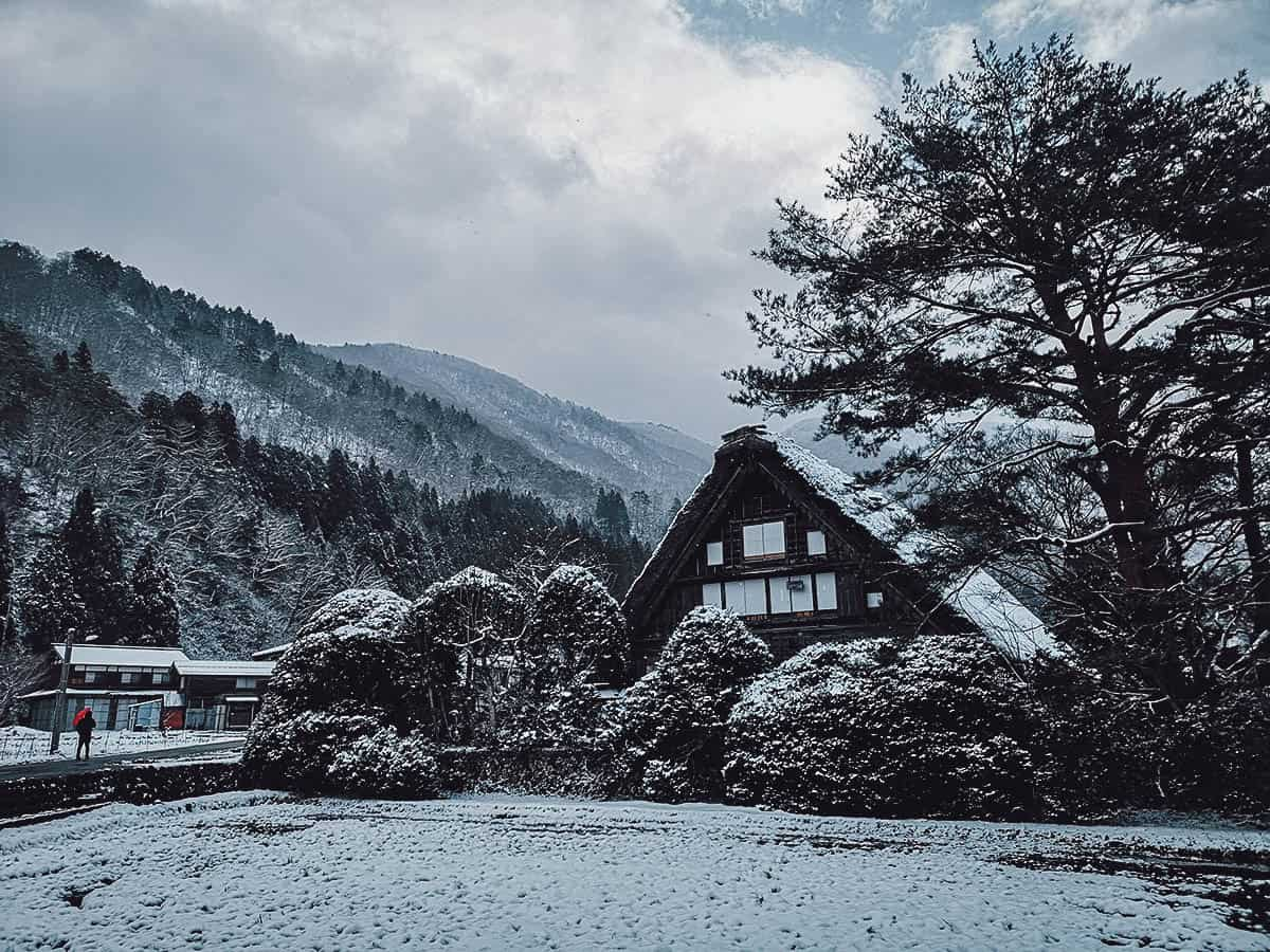Shirakawa-go houses covered in snow