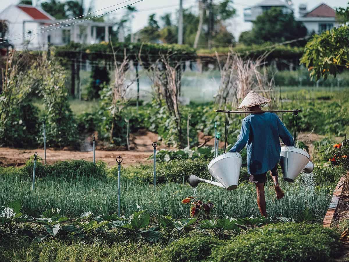 Tra Que Village in Hoi An, Vietnam