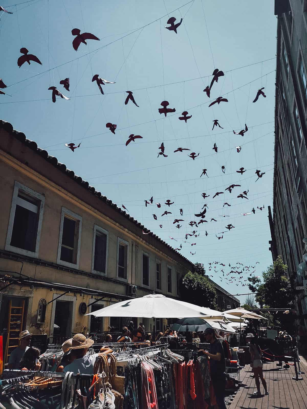 Hanging birds over clothing stalls