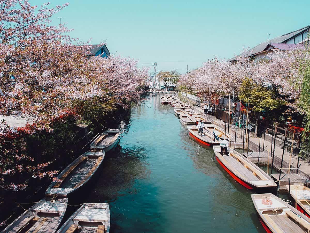 Canals in Yanagawa