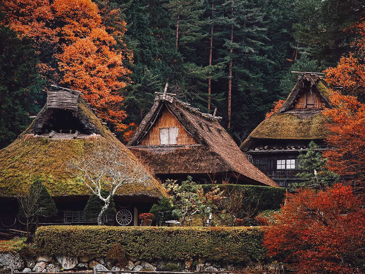 Gassho-zukuri houses in Hida Folk Village