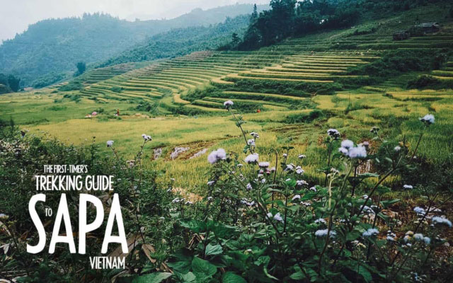 The First-Timer's Trekking Guide to Sapa, Vietnam (2020)