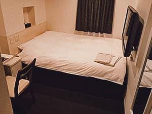 Nagoyaeki Access Hotel, Nagoya, Japan