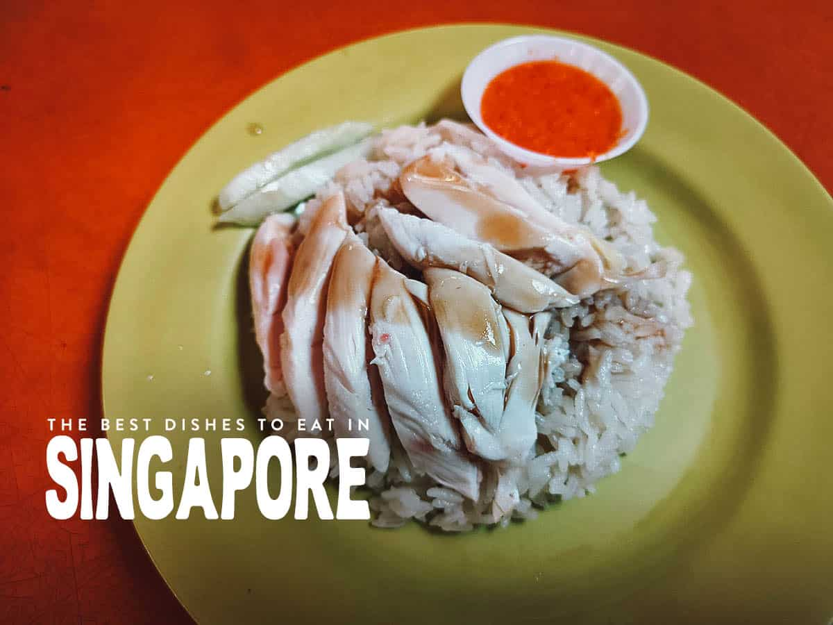Plate of Hainanese chicken rice