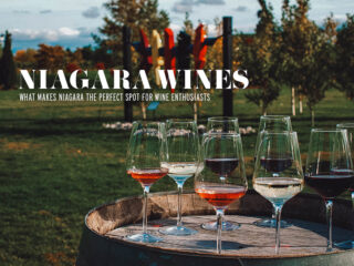 Niagara Wine: What Makes Niagara the Perfect Spot for Wine Enthusiasts