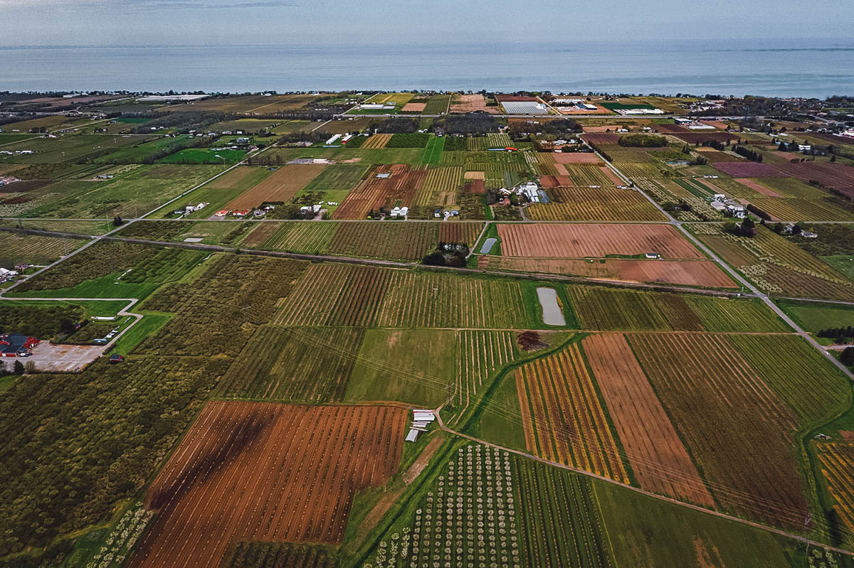 Aerial view of winery