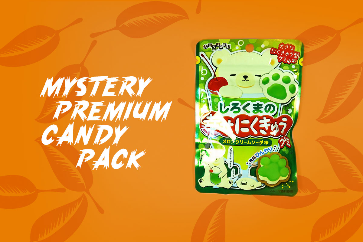 TokyoTreat box contents: Mystery Premium Candy Pack