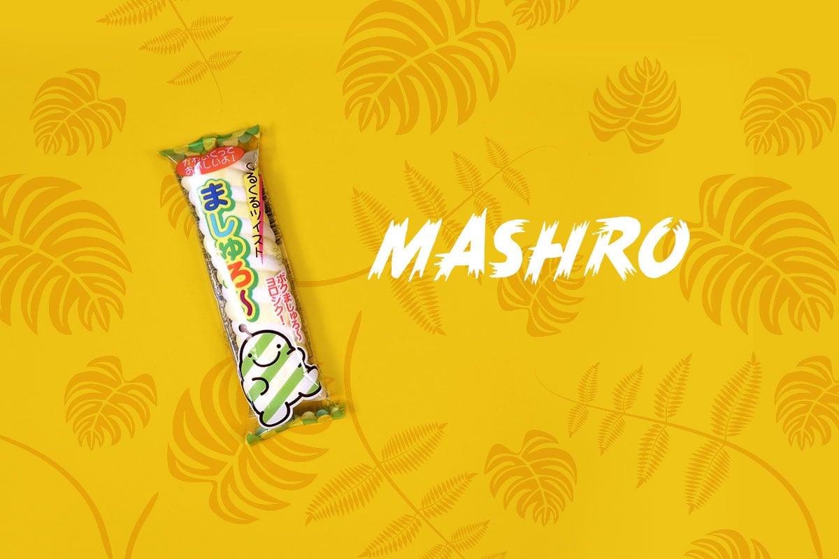 TokyoTreat box contents: Mashro